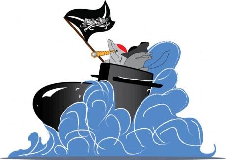2013-Dolphin-Pirates-2